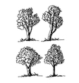 trees design background vector image vector image
