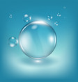 water drops realistic vector image vector image