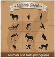 animals and birds pictogram symbols set vector image