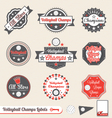 Volleyball League Champs Labels vector image