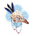 Bird Skull5 vector image vector image