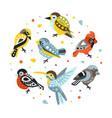 cute birds set small birdies in circular vector image vector image