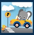 driving in road city with happy elephant vector image vector image