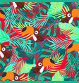 pattern abstract toucan vector image vector image