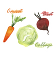 Vegetables watercolor set vector image vector image