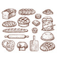 bakery set with a lot of types fresh bread vector image vector image