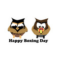 concept for boxing day on isolated background vector image vector image