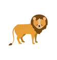 cute lion wild animal icon vector image vector image