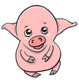 Cute piglet cartoon character vector image