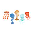 jellyfish collection beautiful swimming marine vector image vector image