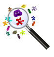 magnifier and germs vector image