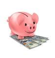 piggy bank and fan dollars banknotes vector image