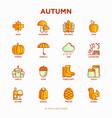 autumn thin line icons set maple mushrooms oak vector image