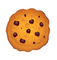 chocolate chips cookie vector image vector image
