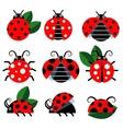 Cute ladybug vector image vector image