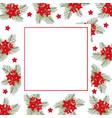 cypress vine flower on christmas white banner card vector image vector image