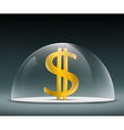 Dollar under a glass dome vector image vector image