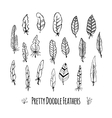 Set of hand-drawn stylized feathers Doodle vector image