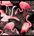 tropical flamingo bird seamless summer pattern vector image
