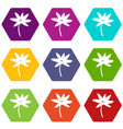 tropical palm tree icon set color hexahedron vector image vector image