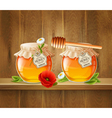 Two Jar Of Honey Composition vector image vector image