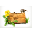 Wooden banner dandelion and green grass vector image