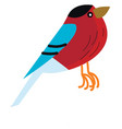 a cute small colorful bird in red blue and black vector image vector image