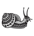 Ethnic ornamented snail vector image vector image