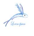 Fish Logo4 vector image