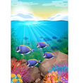 Fish swimming under the ocean vector image vector image