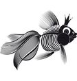 skeleton goldfish vector image vector image