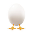 white egg vector image