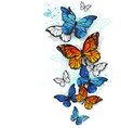 flying butterflies morpho and monarch vector image