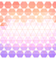 pattern geometric with triangle and hexagon vector image vector image