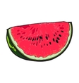 Quarter slice of ripe watermelon with black seeds vector image
