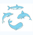 set fish with whale shark narwhal dolphin vector image