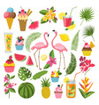 summer time labels set for tropical party vector image vector image