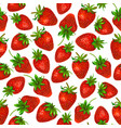 watercolor strawberry on white background vector image