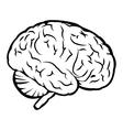 Best human brain sign vector image vector image
