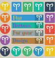 Decorative Zodiac Aries icon sign Set of twenty vector image