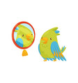 green parrot looking at yourself in the mirror vector image