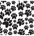 paws icon vector image vector image