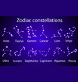 set zodiac constellations in night sky vector image