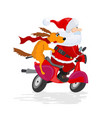 santa claus and dog ride the scooter vector image