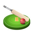 3d cricket field with green grass red ball and vector image vector image