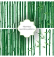 bamboo patterns vector image vector image