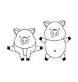 cute pigs couple cartoon vector image