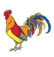 rainbow rooster or cock color vector image