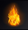 realistic fire or 3d flame orange burn emoji vector image