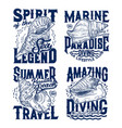 sea mollusks and snails seashells t-shirt prints vector image vector image